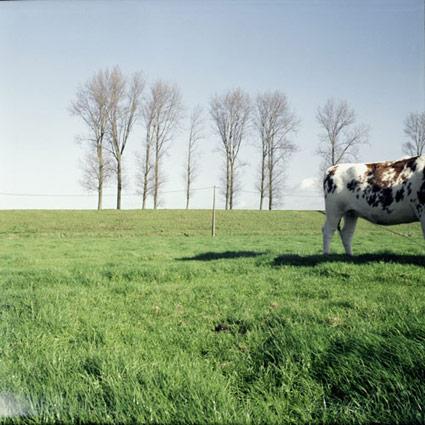 frontieres belges