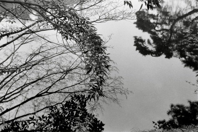 35. Kyoto, 1979