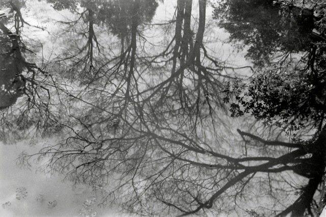 36. Kyoto, 1979