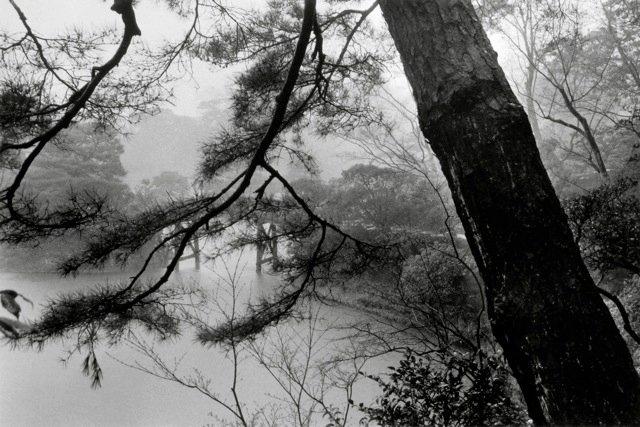37. Kyoto, 1979